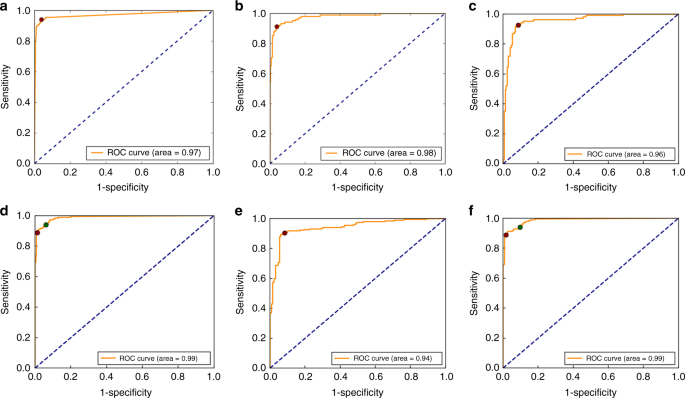 Neural network analysis of sleep stages enables efficient diagnosis of narcolepsy