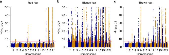 Genome-wide study of hair colour in UK Biobank explains most of the
