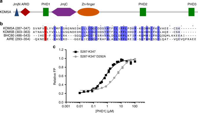 Histone H3 binding to the PHD1 domain of histone demethylase KDM5A