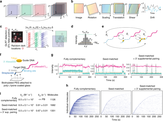 An automated Bayesian pipeline for rapid analysis of single-molecule