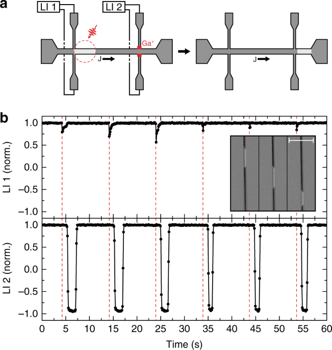 on the fly aos with purely she driven dw motion a illustration of the field free proof of concept measurement demonstrating on the fly single pulse aos in