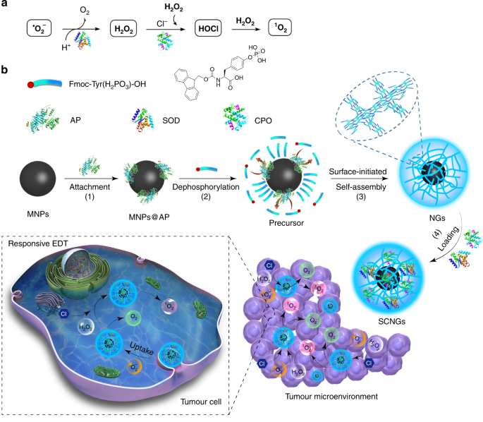 Cascade enzymes within self-assembled hybrid nanogel mimicked neutrophil lysosomes for singlet oxygen elevated cancer therapy