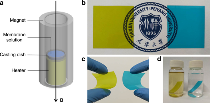 Magnetic field alignment of stable proton-conducting channels in an electrolyte membrane