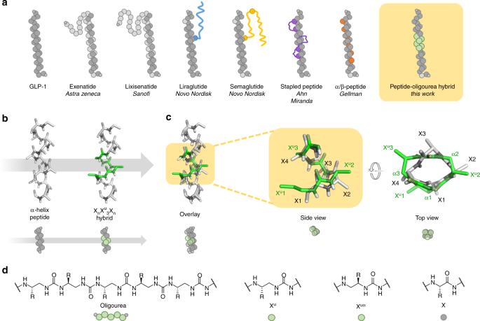 Peptide-oligourea hybrids analogue of GLP-1 with improved action in