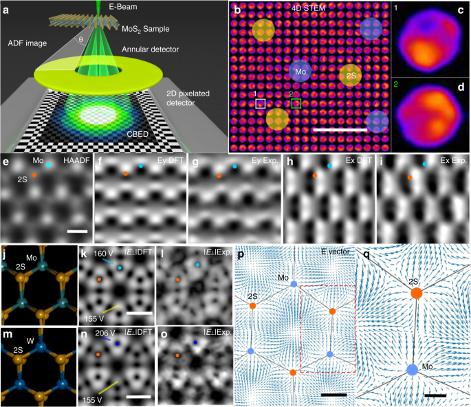 Atomic electrostatic maps of 1D channels in 2D