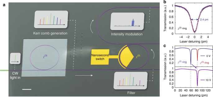 monolithic lithium niobate photonic circuits for kerr