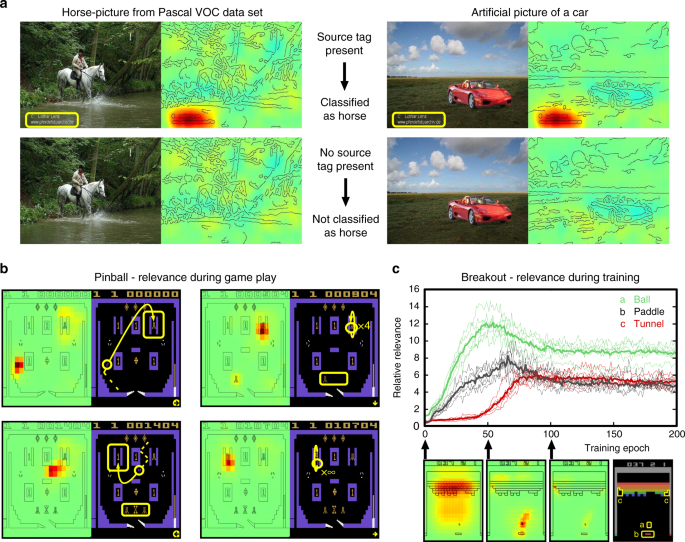 Unmasking Clever Hans predictors and assessing what machines really learn