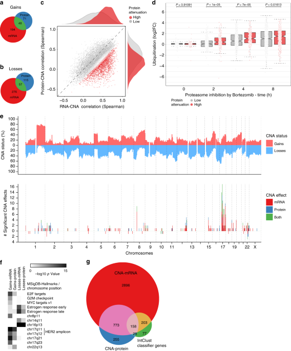 Cancer Gene Twice As Likely To Be >> Breast cancer quantitative proteome and proteogenomic ...