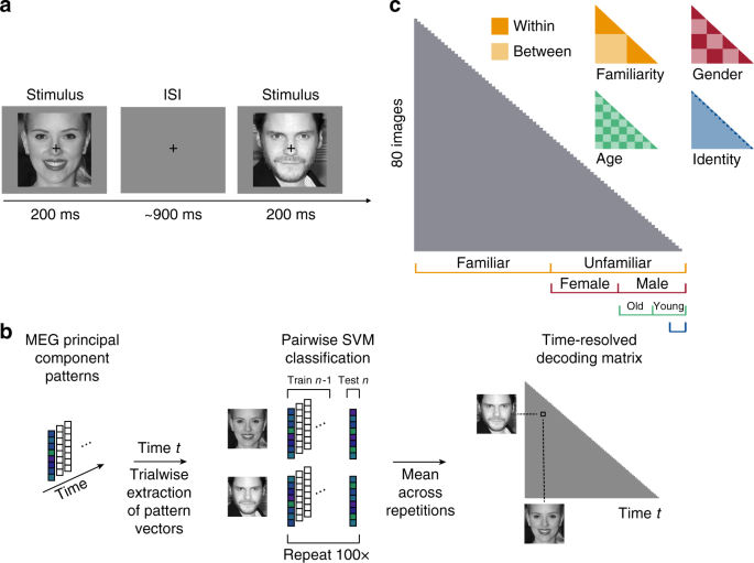 How face perception unfolds over time | Nature Communications