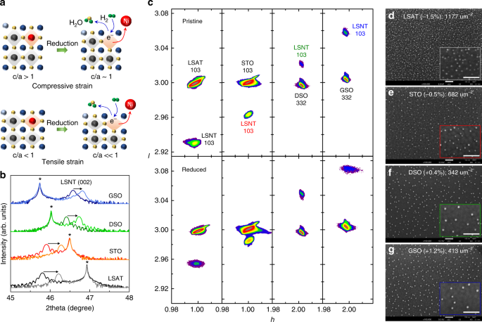 Lattice Strain Enhanced Exsolution Of Nanoparticles In Thin Films Nature Communications