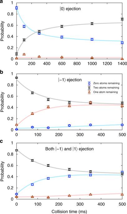 Thermally robust spin correlations between two <sup>85</sup>Rb atoms in an optical microtrap
