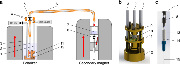 Scalable dissolution-dynamic nuclear polarization with rapid