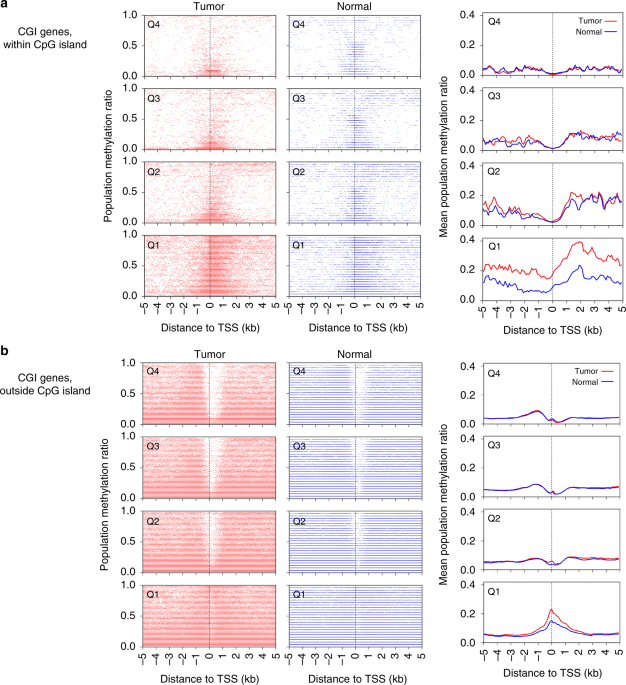 Chromatin dysregulation and DNA methylation at transcription start sites associated with transcriptional repression in cancers