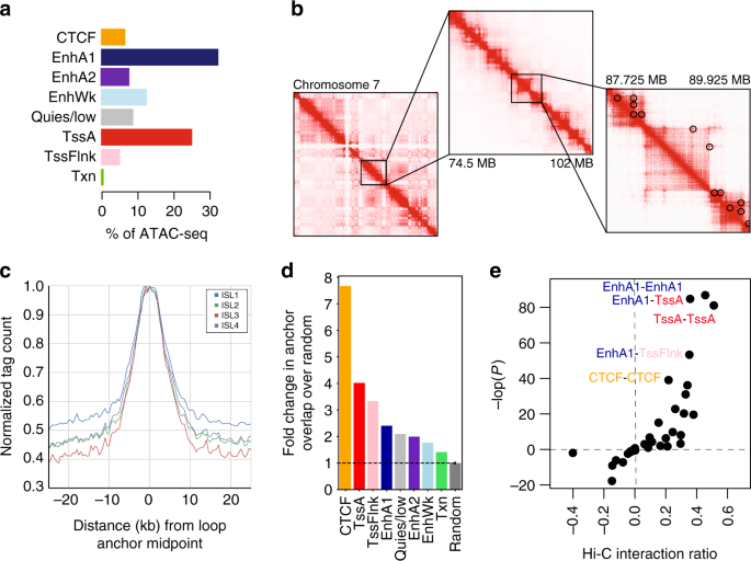 14c209b3332 ... conformation in pancreatic islets. a Islet accessible chromatin signal  mapped predominantly within active enhancer (EnhA1) and promoter (TssA)  states. b ...