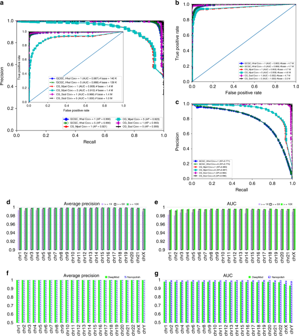 Detection of DNA base modifications by deep recurrent neural network on Oxford Nanopore sequencing data