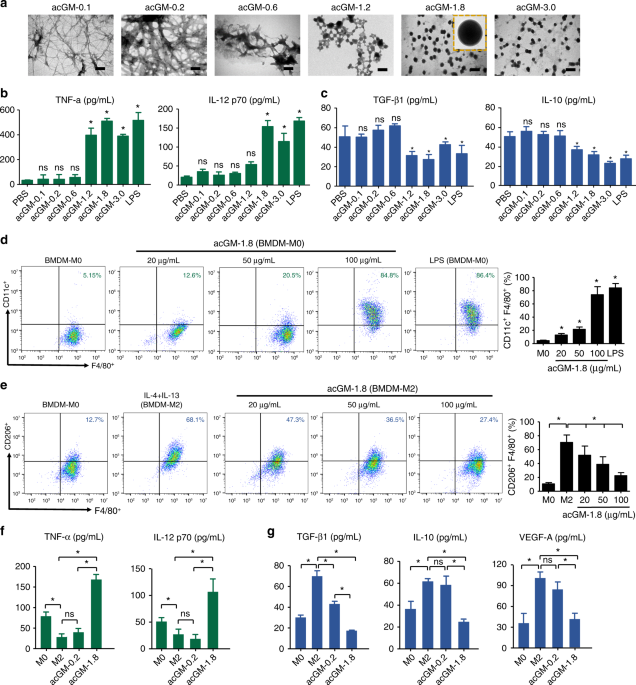 A toll-like receptor agonist mimicking microbial signal to generate tumor-suppressive macrophages