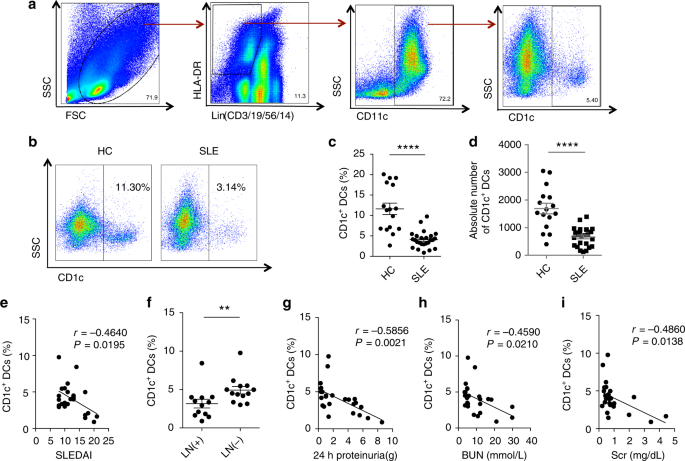 Mesenchymal stem cell therapy induces FLT3L and CD1c+ dendritic cells in systemic lupus erythematosus patients