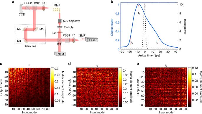 Long-range spatio-temporal correlations in multimode fibers