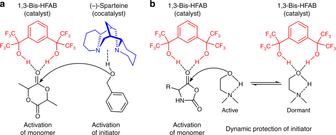 Fast and selective organocatalytic ring-opening polymerization by