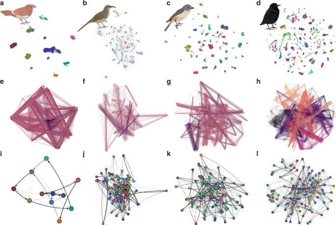 Parallels in the sequential organization of birdsong and human