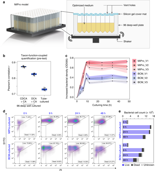 An in vitro model maintaining taxon-specific functional activities of the gut microbiome
