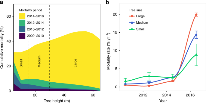Tree Height Explains Mortality Risk During An Intense Drought