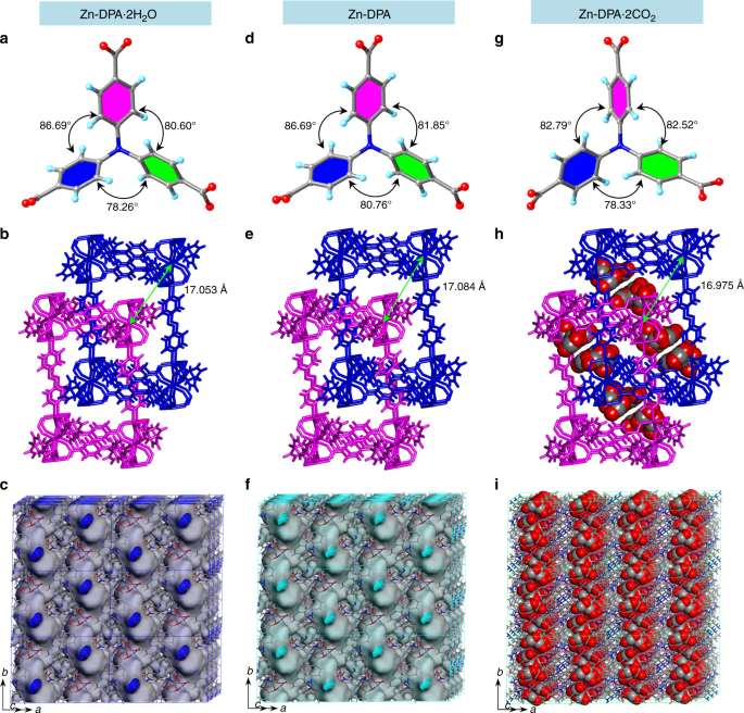 Carbon dioxide capture and efficient fixation in a dynamic porous coordination polymer