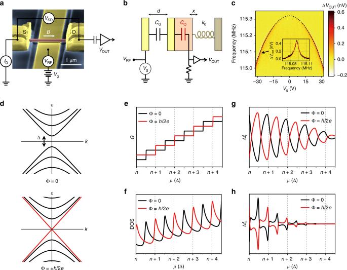 Nanomechanical characterization of quantum interference in a topological insulator nanowire