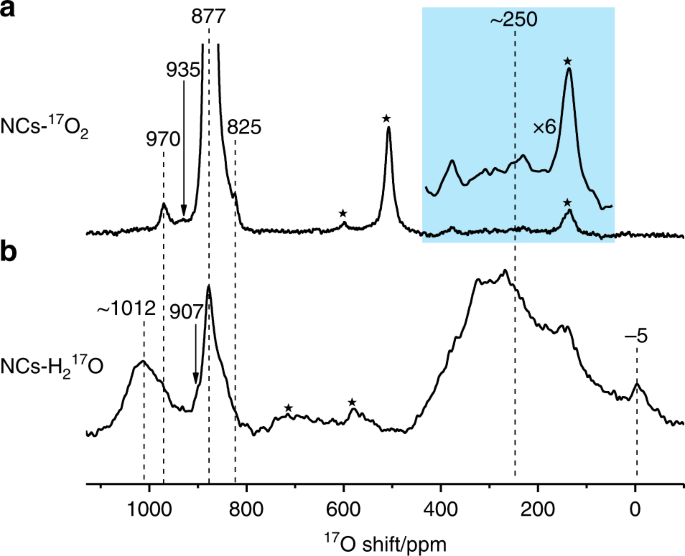 Polar Surface Structure Of Oxide Nanocrystals Revealed With Solid