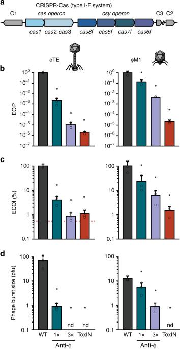 type i f crispr cas resistance against virulent phages  torh%c3%83%c2%bcter c 45 #7
