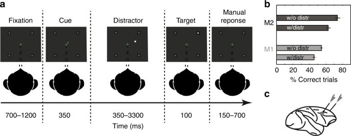 Prefrontal attentional saccades explore space rhythmically