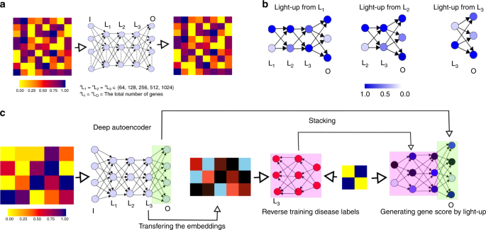 Deriving disease modules from the compressed transcriptional space embedded in a deep autoencoder