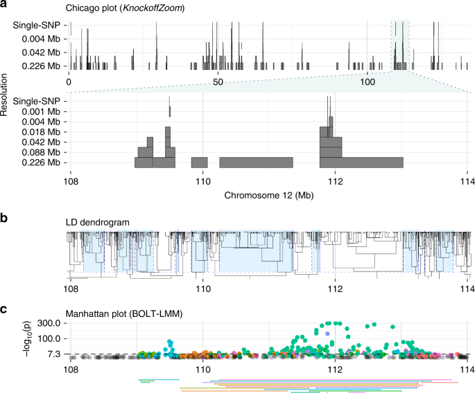 Multi-resolution localization of causal variants across the genome