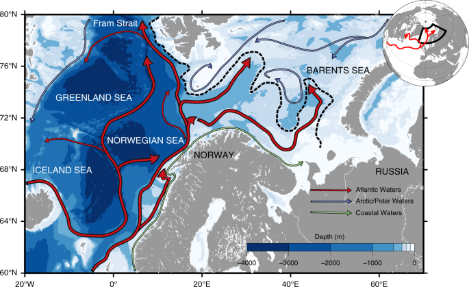 Faster Atlantic currents drive poleward expansion of temperate phytoplankton in the Arctic Ocean