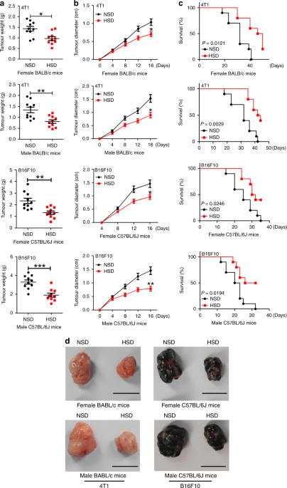 High-salt diet inhibits tumour growth in mice via regulating myeloid-derived suppressor cell differentiation