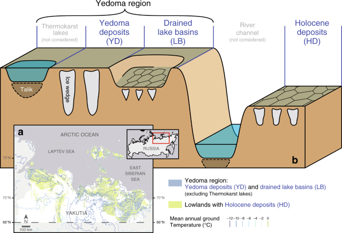 Fast response of cold ice-rich permafrost in northeast Siberia to a warming climate