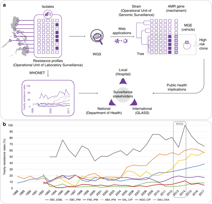 Integrating whole-genome sequencing within the National Antimicrobial Resistance Surveillance Program in the Philippines