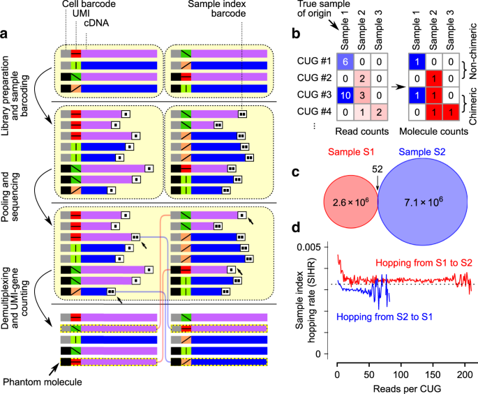 Model-based analysis of sample index hopping reveals its widespread artifacts in multiplexed single-cell RNA-sequencing