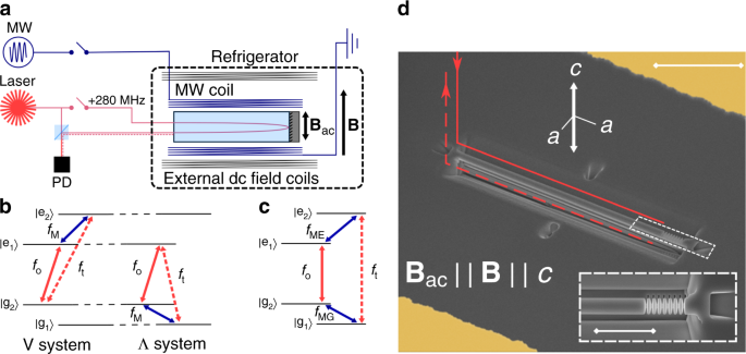 On-chip coherent microwave-to-optical transduction mediated by ytterbium in YVO4