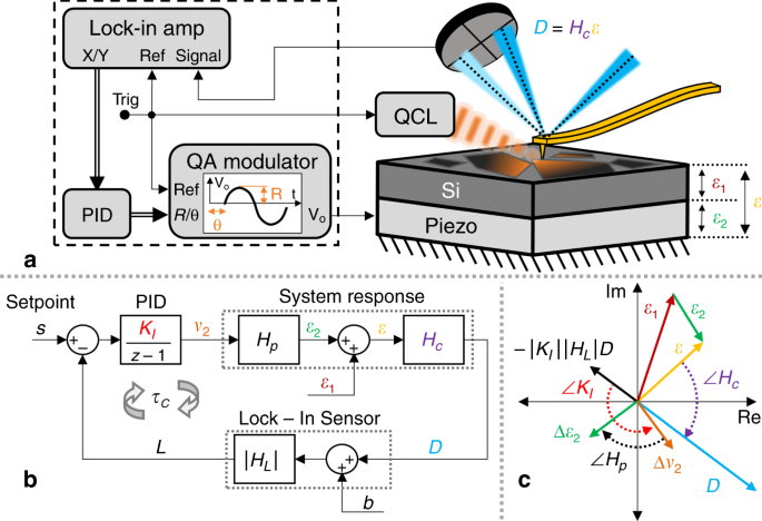 Closed-loop atomic force microscopy-infrared spectroscopic imaging for nanoscale molecular characterization