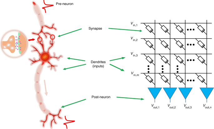 Spiking neurons with spatiotemporal dynamics and gain modulation for monolithically integrated memristive neural networks