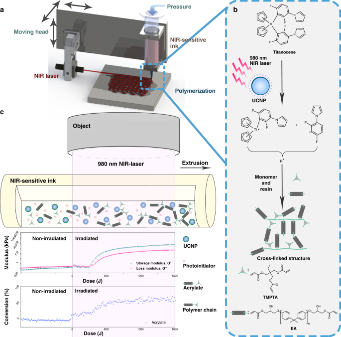 3D printing of multi-scalable structures via high penetration near-infrared photopolymerization