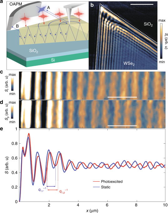 Femtosecond exciton dynamics in WSe2 optical waveguides
