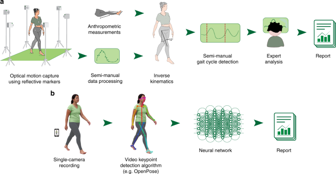 Deep neural networks enable quantitative movement analysis using single-camera videos
