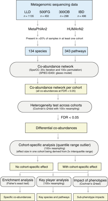 Gut microbial co-abundance networks show specificity in inflammatory bowel disease and obesity