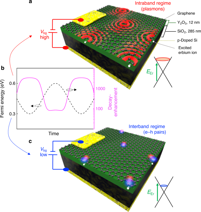 Fast electrical modulation of strong near-field interactions between erbium emitters and graphene