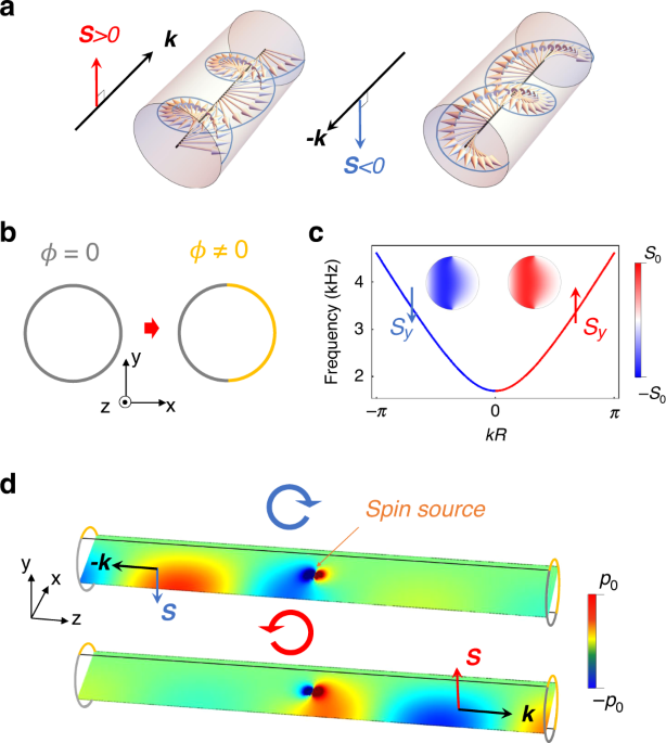 Realization of acoustic spin transport in metasurface waveguides