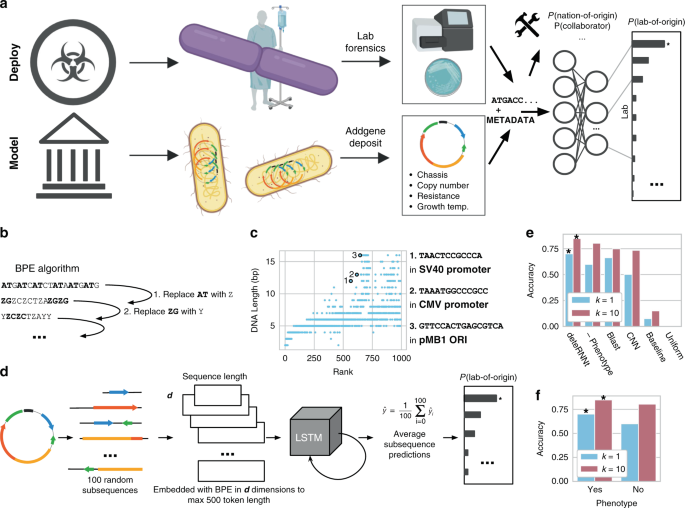 Research papers genetic engineering cloning scholarships essay sample nursing