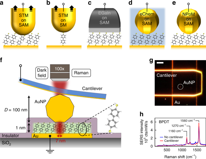 Optical Probes Of Molecules As Nano Mechanical Switches Nature Communications