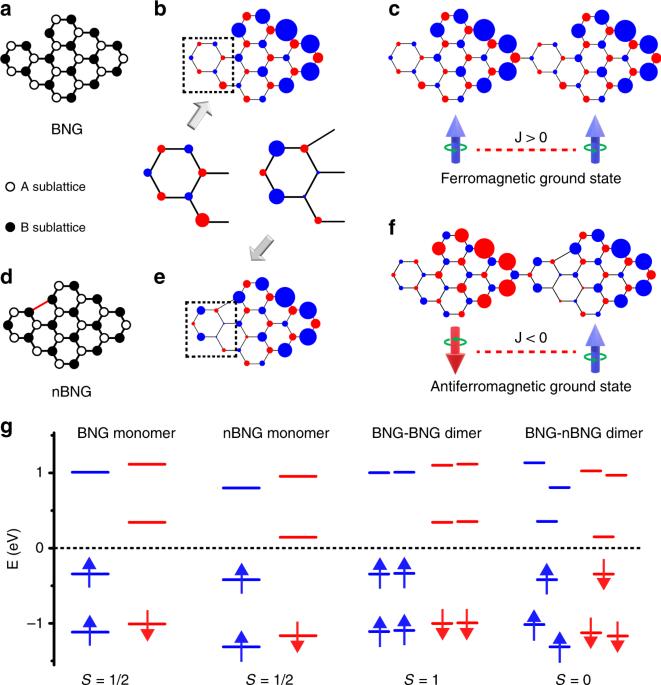Designer spin order in diradical nanographenes